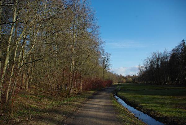 весенний парк и синее небо