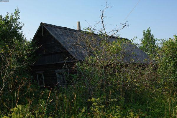 русская деревня летом фотографии