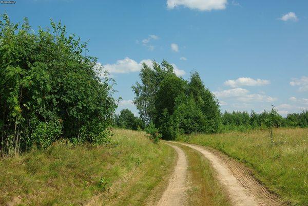 русская деревня дорога