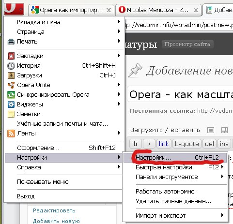 Opera Опера маштабирование только текста