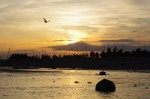 2013-06-06-piter-sunset-0009