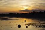 2013-06-06-piter-sunset-0010