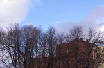 2012-04-18-piter-0001